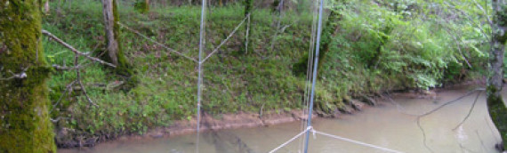 Fort McClellan Gray Bat Mist net and Radio telemetry Study