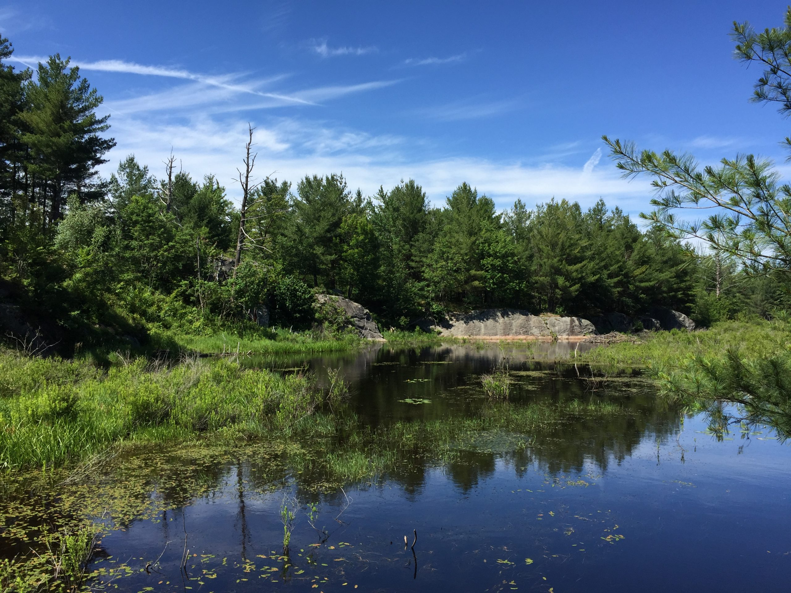 Copperhead Consulting, Kentucky Environmental Regulation Services